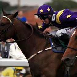 British Horseracing Authority to Introduce Saliva Tests on Jockeys